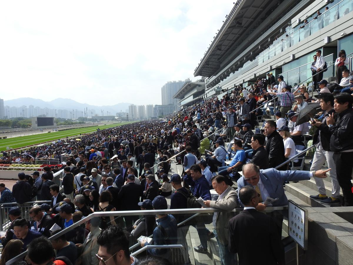 賽事當天沙田馬場擠滿了來自全球觀賽的群眾,盛況空前,周邊交通甚至為之打結。