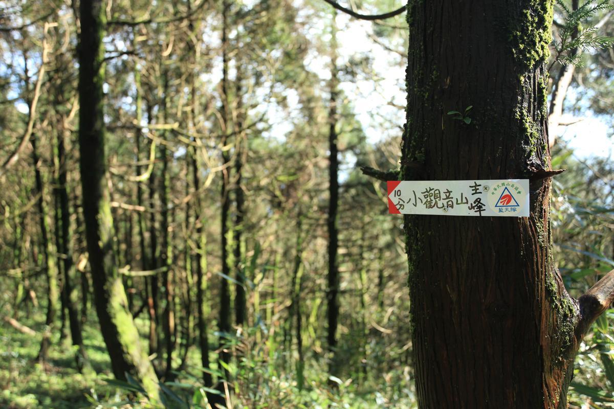 小觀音山的「指示牌」。