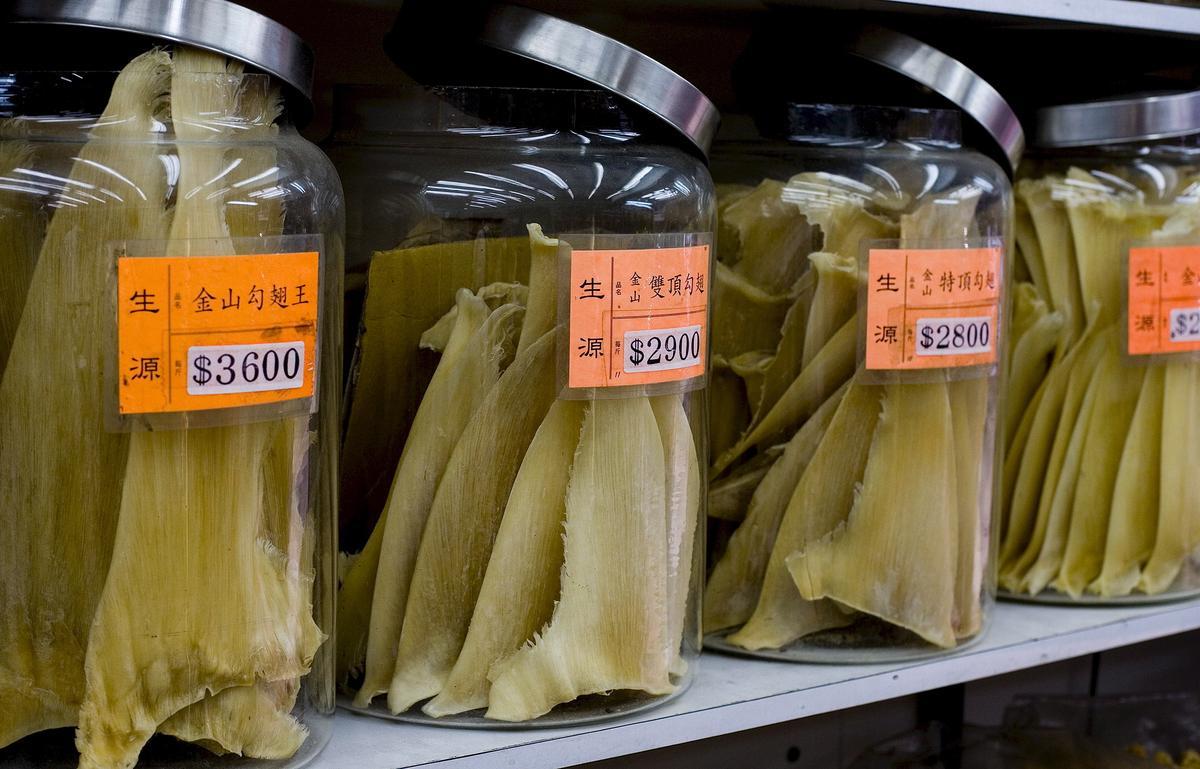 香港有全球「魚翅之都」稱號,是全球魚翅的貿易樞紐,但調查發現,多數人認為婚宴上有沒有魚翅都無所謂。(東方IC)