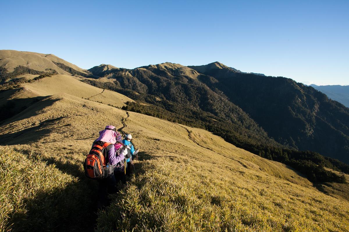 高山上的草原 不能躺卻愛得要死