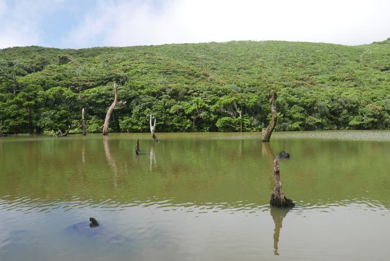 神祕的高山之海 蘭嶼大天池
