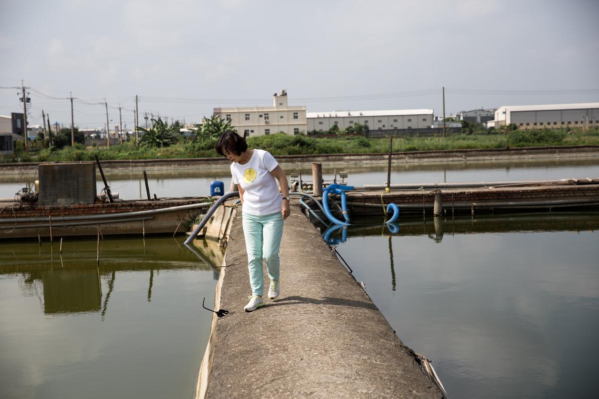 旺生企業總經理郭瓊英對台灣鰻魚產業發展感到憂心忡忡,圖為巡視鹿港鰻魚養殖廠。