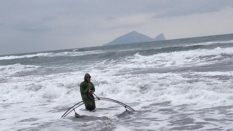 每年冬季鰻苗撈捕期,漁民得頂著東北季風靠人工收網捕苗,是非常危險的工作。(旺生提供)